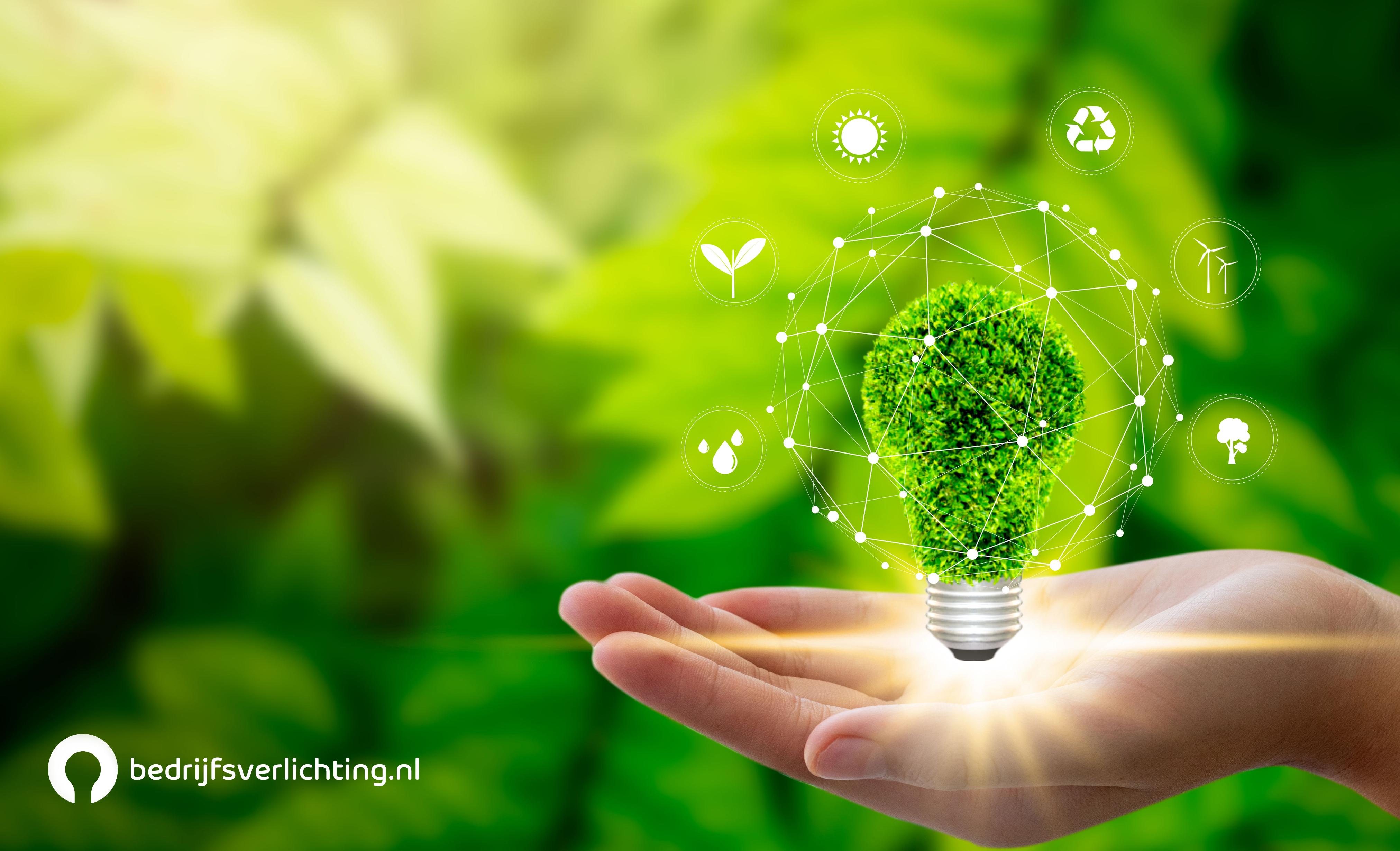 Wereld Milieu Dag 2021: Hoe LED-verlichting bijdraagt aan een schoner milieu
