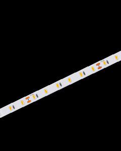LED strip   24V   2700K   10W   60 LED/m   IP20